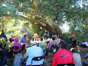 Organizzazione Eventi e Attività Culturali